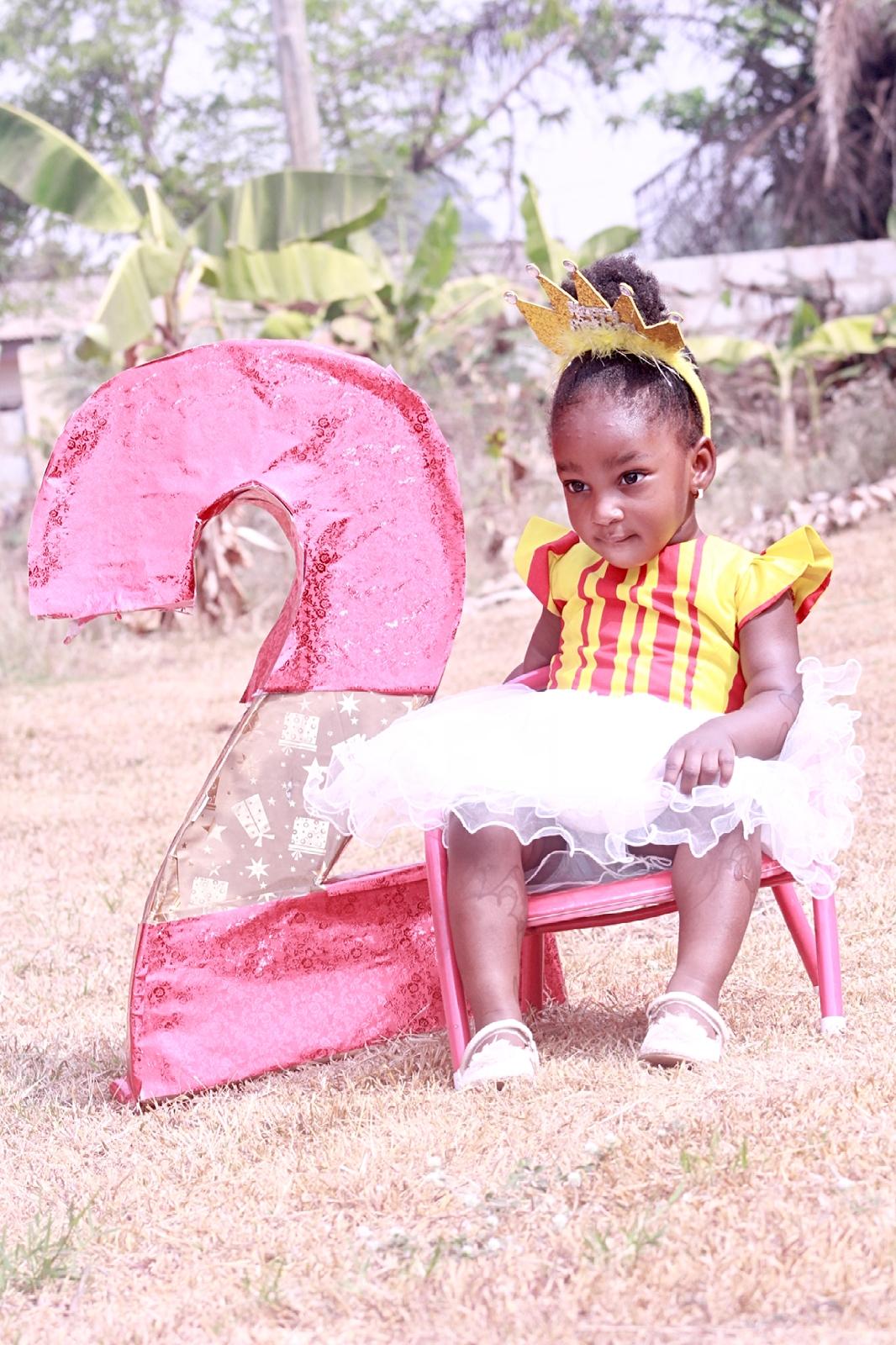 2 year old princess birthday